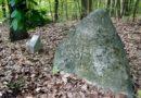 Kamienie morowe w Puszczy Bukowej – jak znaleźć morowce? Mapa, ciekawostki.